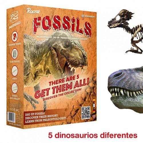 Juego fósil de dinosaurio...